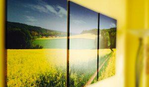 Tele canvas da parete